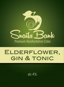 Elderflower-gin-tonic-01